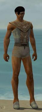 Dervish Vabbian Armor M gray chest feet front.jpg