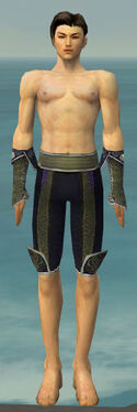Elementalist Canthan Armor M gray arms legs front.jpg
