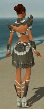 Paragon Elite Sunspear Armor F gray back.jpg