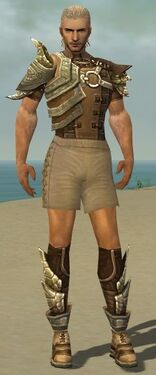 Ranger Asuran Armor M gray chest feet front.jpg