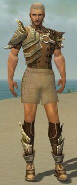 Ranger Asuran Armor M gray chest feet front.jpg