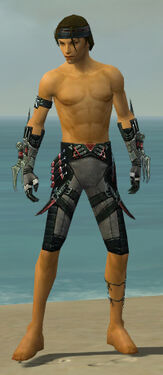Assassin Elite Canthan Armor M gray arms legs front.jpg