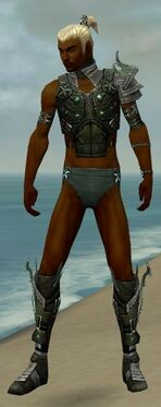 Assassin Elite Luxon Armor M gray chest feet front.jpg