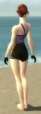 Mesmer Elite Sunspear Armor F gray arms legs back.jpg