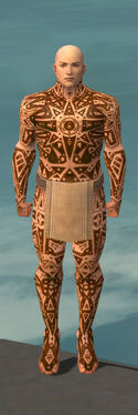 Monk Star Armor M dyed front.jpg