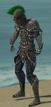 Necromancer Elite Necrotic Armor M gray side.jpg