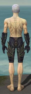 Necromancer Krytan Armor M gray arms legs back.jpg