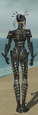 Necromancer Necrotic Armor F gray back.jpg