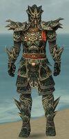 Warrior Elite Luxon Armor M gray front.jpg