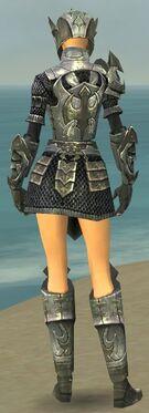 Warrior Elite Templar Armor F gray back.jpg
