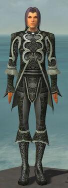 Elementalist Elite Canthan Armor M gray front.jpg