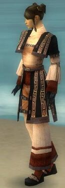 Monk Ancient Armor F dyed side.jpg