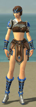Warrior Gladiator Armor F dyed front.jpg