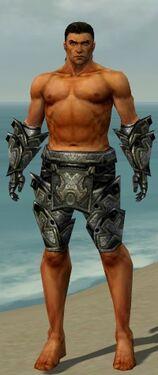 Warrior Obsidian Armor M gray arms legs front.jpg