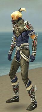 Assassin Norn Armor M gray side.jpg