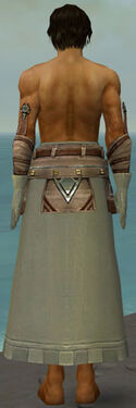 Dervish Istani Armor M gray arms legs back.jpg