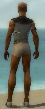 Dervish Primeval Armor M gray chest feet back.jpg