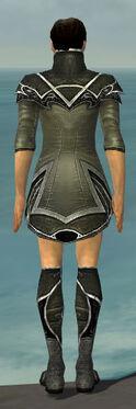 Elementalist Shing Jea Armor M gray chest feet back.jpg