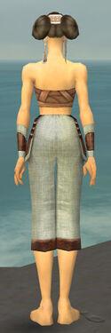 Monk Censor Armor F gray arms legs back.jpg