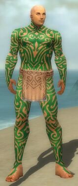 Monk Flowing Armor M dyed front.jpg