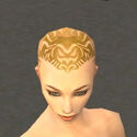 Monk Primeval Armor F dyed head front.jpg