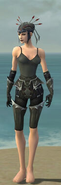 Necromancer Tyrian Armor F gray arms legs front.jpg
