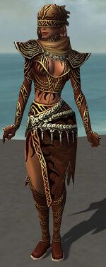 Xandra Armor Brotherhood Front.jpg