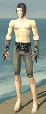Elementalist Asuran Armor M gray arms legs front.jpg