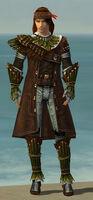 Ranger Druid Armor M gray front.jpg
