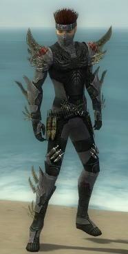 Assassin Elite Imperial Armor M gray front.jpg
