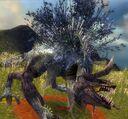 Dragon lilly.jpg
