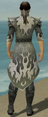 Elementalist Elite Flameforged Armor M gray chest feet back.jpg