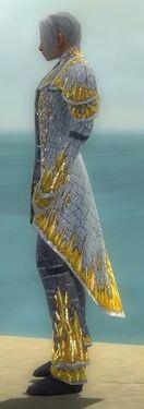Elementalist Elite Iceforged Armor M dyed side.jpg