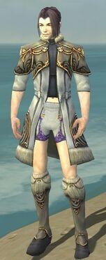 Elementalist Norn Armor M gray chest feet front.jpg