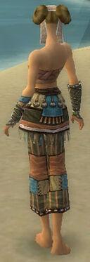 Monk Luxon Armor F gray arms legs back.jpg