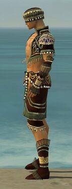 Ritualist Vabbian Armor M gray side.jpg