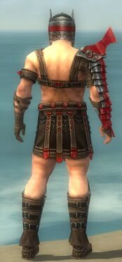 Warrior Elite Gladiator Armor M dyed back.jpg