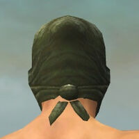 Mask of the Mo Zing M gray back.jpg
