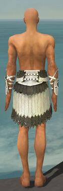 Paragon Sunspear Armor M gray arms legs back.jpg