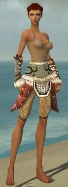 Ranger Canthan Armor F gray arms legs front.jpg