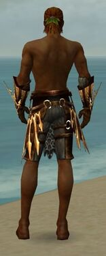 Ranger Elite Sunspear Armor M gray arms legs back.jpg