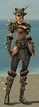 Warrior Elite Charr Hide Armor F gray front.jpg