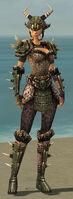 Warrior Elite Charr Hide Armor F gray front.jpg