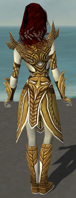 Hayda Armor Deldrimor Back.jpg