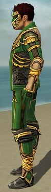 Mesmer Asuran Armor M dyed side.jpg