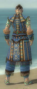 Monk Elite Luxon Armor M dyed back.jpg