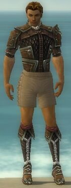 Ranger Elite Canthan Armor M gray chest feet front.jpg
