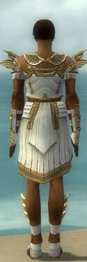 Paragon Ancient Armor M dyed back.jpg