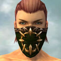 Ranger Sunspear Armor M dyed head front.jpg