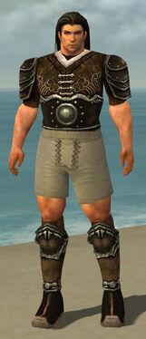 Warrior Shing Jea Armor M gray chest feet back.jpg